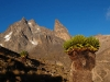 Mt kenia. Z lewej Batian, z prawej Nelion