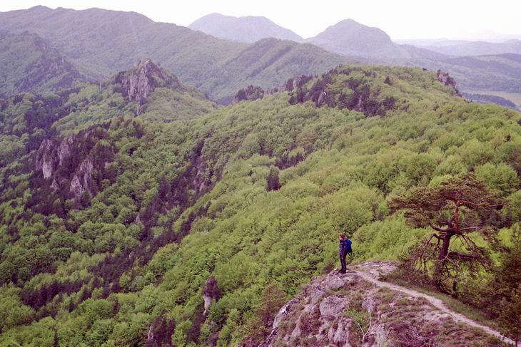 Brada - najwyższy punkt doliny. W tle skały Hrad