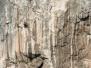 ARCO 2006 -Galeria II