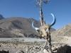 Himalaje w wersji pustynnej - dolina Kali Gandaki