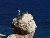 34 - Na Sardynii wspin i plaża występują razem