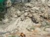 Sardynia klif Biddiriscottai 1