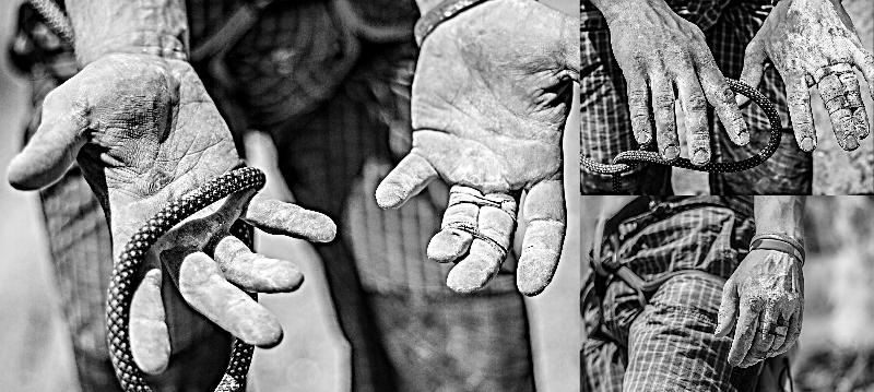 Dlonie osoby uprawiacej wspinanie - Mirosław Nietupski